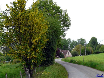 20090509 019 LaPerriere FR61